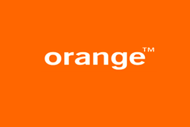 Second level administration and maintenance of Orange's proprietary network management systems (NMS)